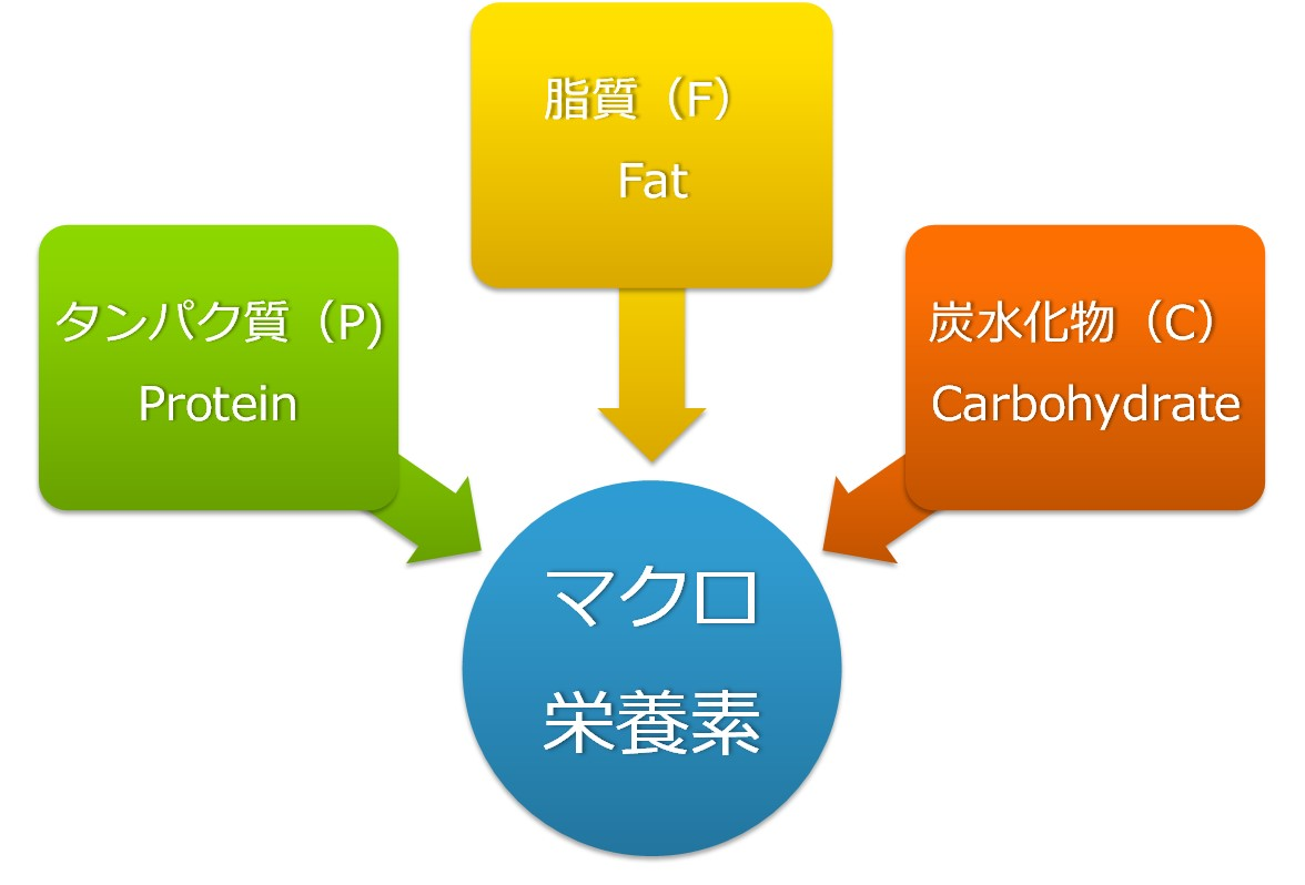 マクロ栄養素を示した図