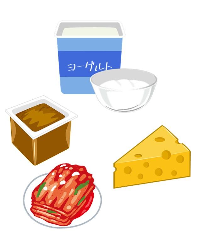 善玉菌を多く含む食品