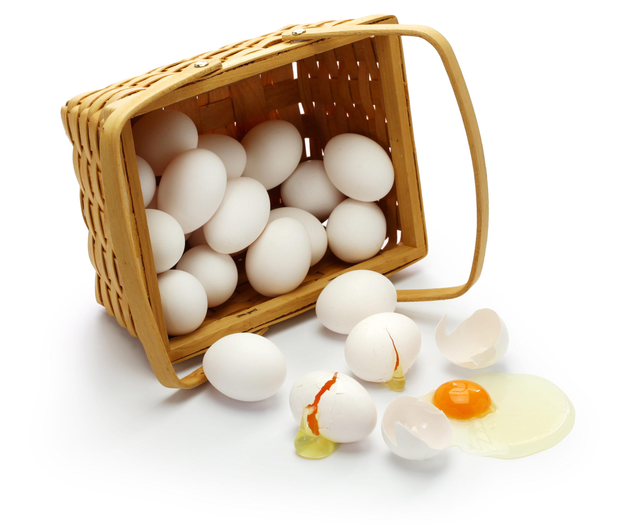 全部の卵を1つのカゴに入れてはいけない